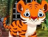 Cute Tiger Cub Rescue