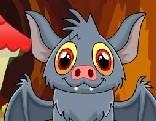 Vampire Bat Rescue