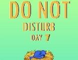 Nsr Do Not Disturb Day 7