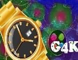 G4K Find My Gold Watch