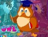 G4K Master Owl Escape
