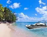 Mousecity Luxury Beach Escape