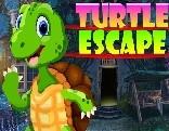 G4K Turtle Escape