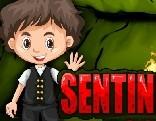 G4E Sentinel Cave Escape