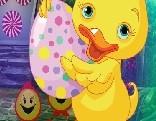 G4K Infant Duck Rescue