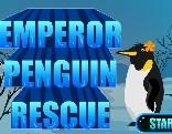 G4E Emperor Penguin Rescue