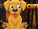 AVM Cute Pet Dog Escape