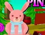 AVM Naughty Pink Rabbit Rescue