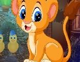 G4K Find Lion Cub