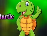 Avm Escape The Cartoon Turtle
