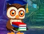 G4K Degree Owl Rescue