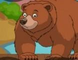 G4E Bear Rescue