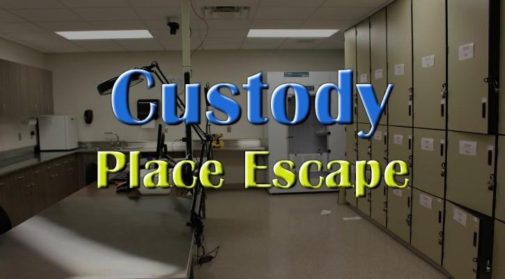 GFG Custody Place Escape