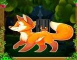 Top10 Rescue The Fox Escape