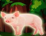 Top10 Rescue the Pig