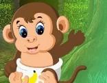 G4K Rescue The Baby Monkey