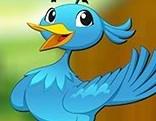 Avm Pet Bird Escape