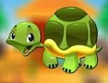 Avm Turtle Escape