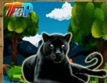 Top10 Rescue the Black Cheetah