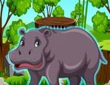 Top10 Rescue The Hippopotamus