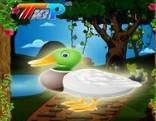 Rescue The Duck