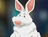 Avm Fluffy Rabbit Escape