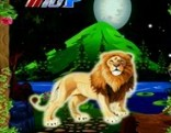 Top10 Rescue the Lion