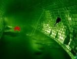 Sewer Fun Escape