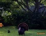 FUN Wanna Wild Turkey Escape