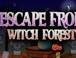 Top10 Escape From Witch Forest
