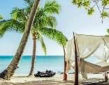 MouseCity Paradise Beach Escape