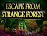 Top10 Escape From The Strange Forest