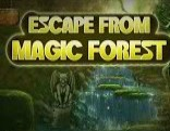Top10 Escape From Magic Forest