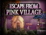 Top10 Escape From Pink Village