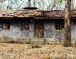 GFG Desolate Forest House Escape
