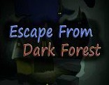 Escape From Dark Forest
