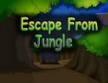 Escape From Jungle