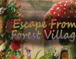 Escape From Forest Village