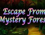Top10 Escape From Mystery Forest