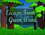 Top10 Escape From Green Wood