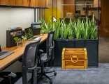 Modern Executive office Escape