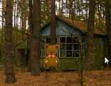 Fun Forest House Tree Escape