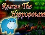 Rescue The Hippopotamus