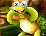G4K Meek Turtle Escape