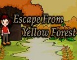 Top10 Escape From Yellow Forest1