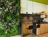 GFG Eco Apartment Room Escape