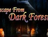 Top10 Escape From Dark Forest1