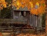 FUN Thanksgiving Forest Escape