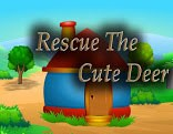 Top10 Rescue The Cute Deer
