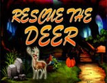 Rescue The Deer